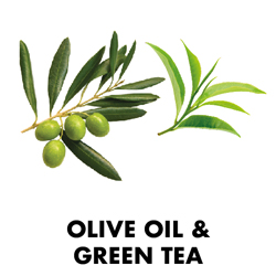 Olive Oil & Green Tea